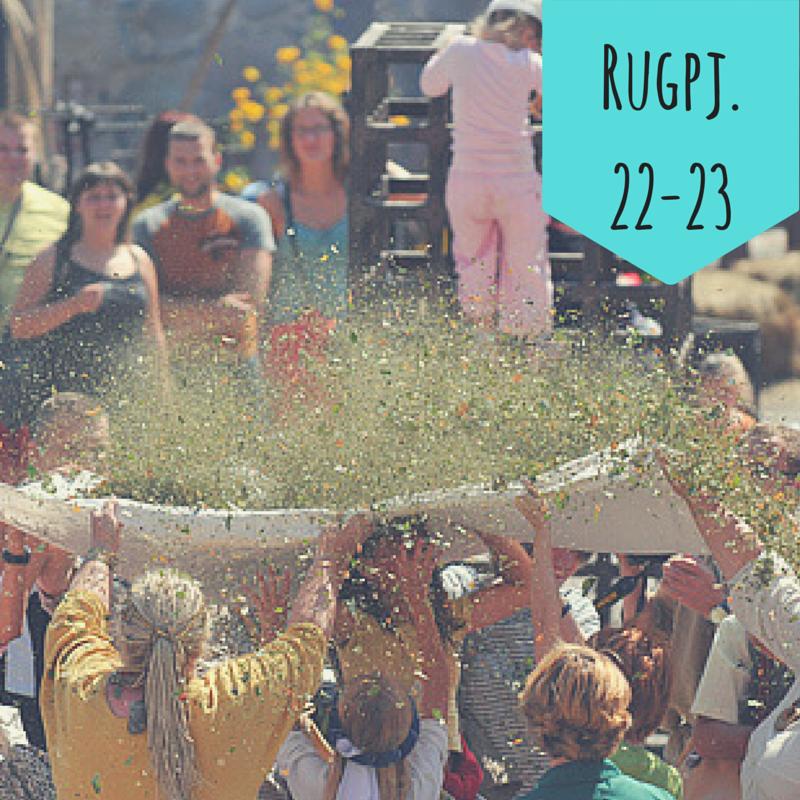 Rugpj.15-11.png