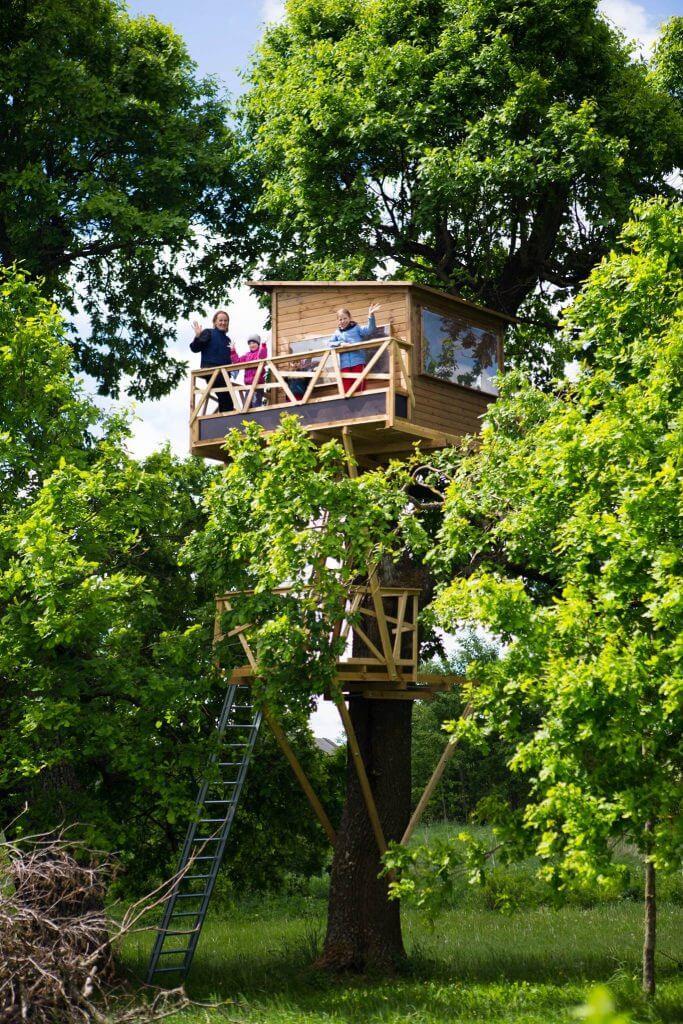 """""""Namas medyje"""" projektas ant nulūžusio ąžuolo"""