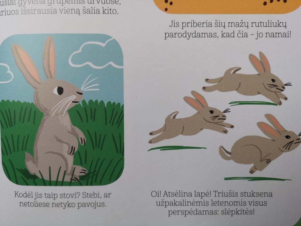 gyvunu enciklopedija maziesiems 4