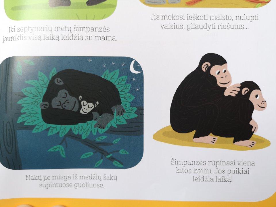 gyvunu enciklopedija maziesiems 2