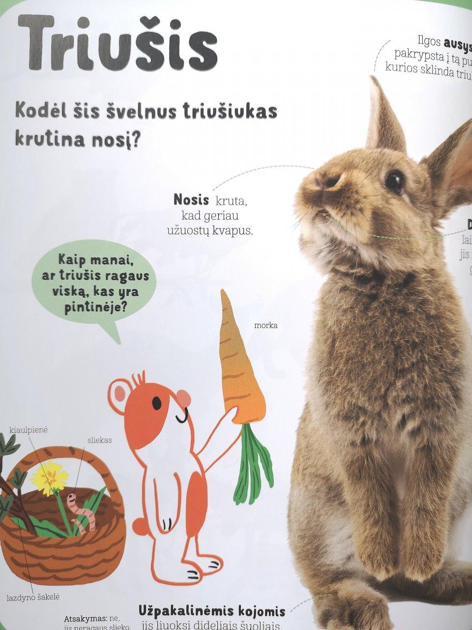 gyvunu enciklopedija maziesiems  5