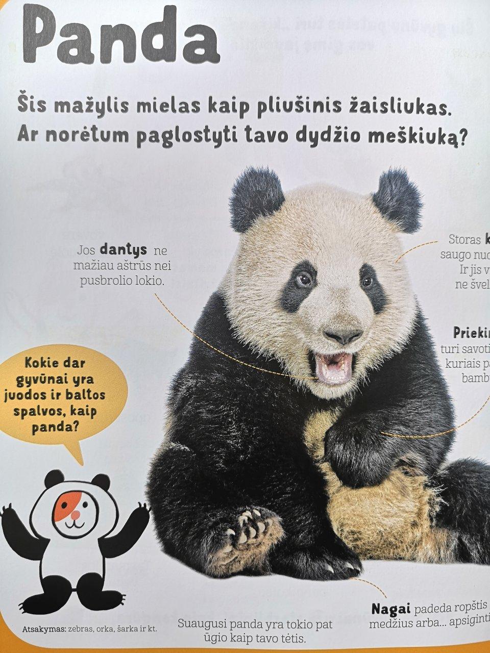 gyvunu enciklopedija maziesiems 1