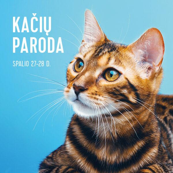 panorama_kaciu-paroda_2018_banner_vidiniai_600x600_LT-1.jpg